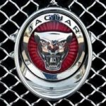 Jaguar News Reviews Blog And Information